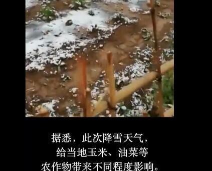 甘肃入夏多地降雪怎么回事?甘肃入夏气温多少为什么多地降雪