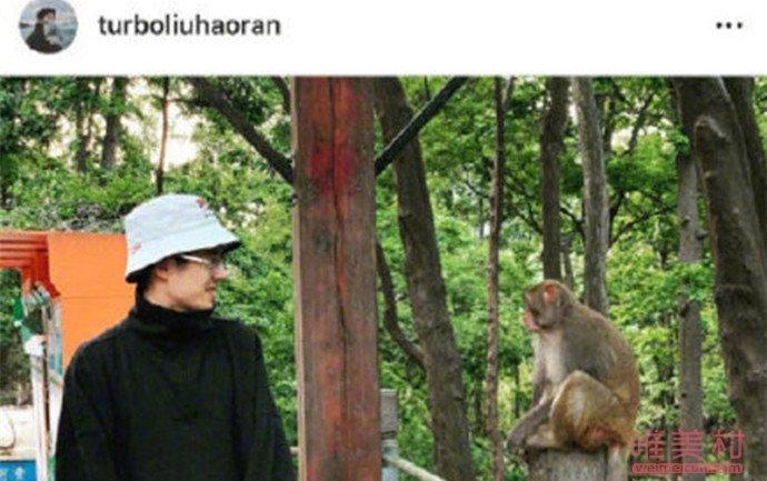 刘昊然和猴子对视怎么回事 详细经过现场图曝光