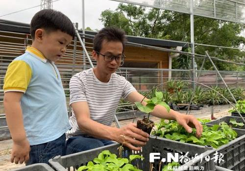 台企福清绿生园农场承载的创业梦