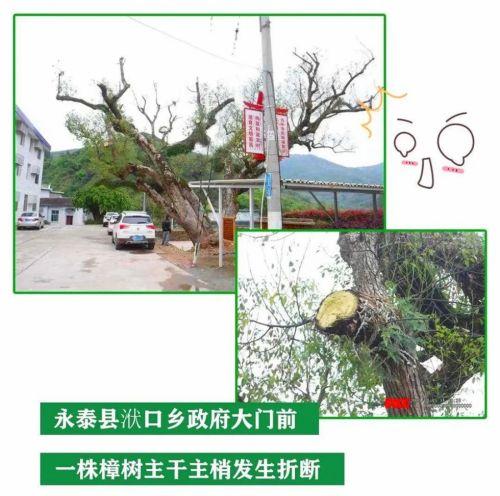 http://www.clzxc.com/qichejiaxing/22775.html