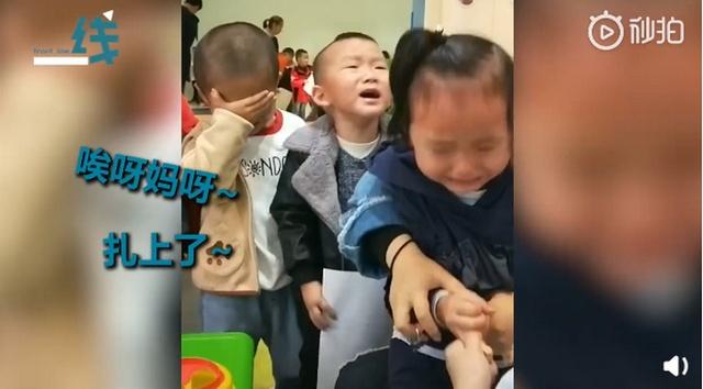 幼儿园采血现场萌娃哭成一片怎么回事 详细经过现场图太逗了