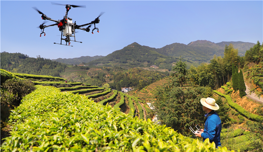 福建:多做经济发展和生态保护相协调相促进的文章