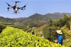 福建:多做經濟發展和生態保護相協調相促進的文章