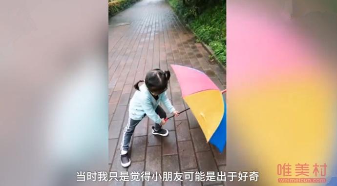 4岁萌娃雨天为蜗牛撑伞 小女孩萌翻众人评论区太逗了(图)