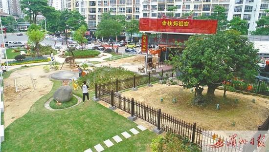 莆田围绕千年古荔 宋家香周边建起口袋公园