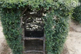 老农耗时17年种出椅子树什么情况?现场图曝光令人新奇不已