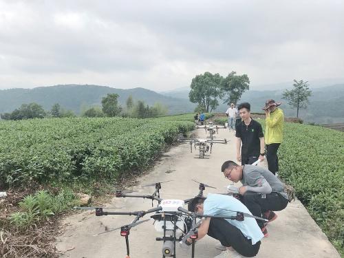 八闽大地托管兴——福建省良策真招推进农业生产托管服务